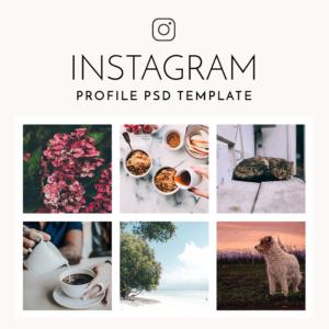 adoreddesignes-instagram-profile-psd-template