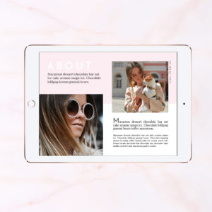 3blogger-proposal-kit-media-pricing-photoshop-template-adoreddesigns