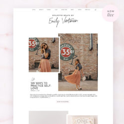 Just launched – Emily Vartanian Blog